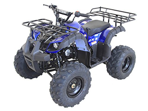 Primary Vehicle - ATV Insurance Quote